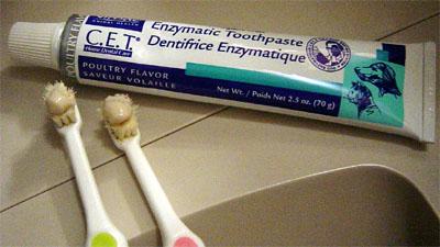 3歯磨き.jpg